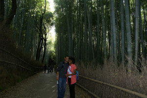 That Bamboo is PRETTY Tall